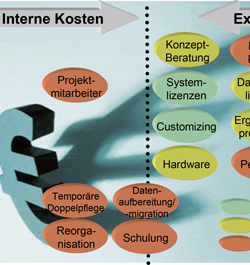 Was kostet ein ERP-System?