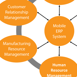 Usability challenges for mobile ERP systems