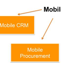 Mobilität von ERP-Systemen
