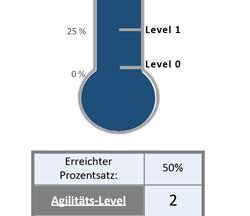 Agile Vorgehensweisen für ERP-Implementierungen