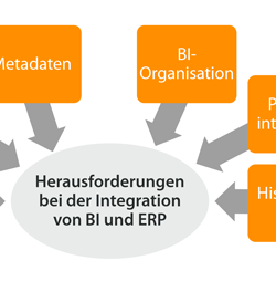 Reintegration von Reporting in ERP-Systeme