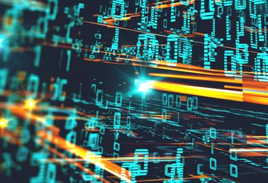 Erfolgsfaktor Data Governance